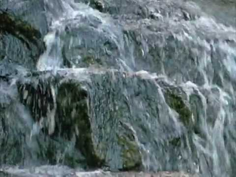 Vivaldi - The Four Seasons (All Four Seasons)