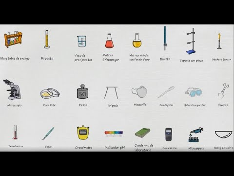 Nombre De Los Instrumentos De Laboratorio Lista De Aparatos De Laboratorio En Español Youtube