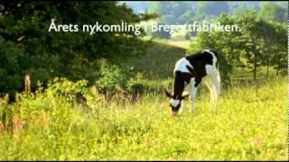Bregott Mindre - Årets nykomling (2011)