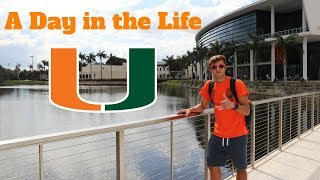 Download A DAY IN THE LIFE AT THE UNIVERSITY OF MIAMI Mp3 and Videos