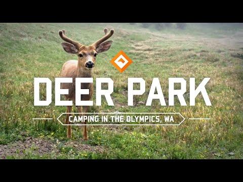 Camping & Hiking Washington - Deer Park