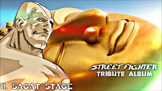 "11. Sagat Stage - Street Fighter ""Tribute Album"""