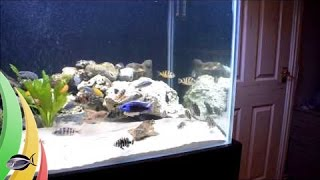 How To Build A Fish Tank Stand: Part 3 Completed