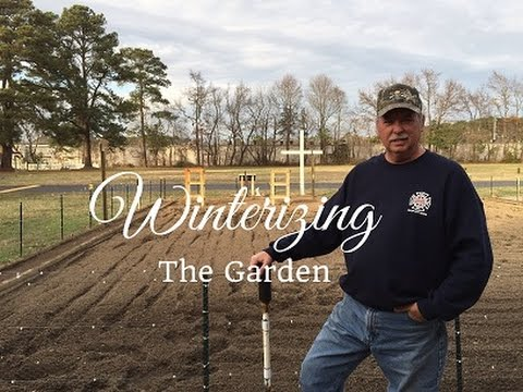 HD How to Winterize Your Vegetable Garden