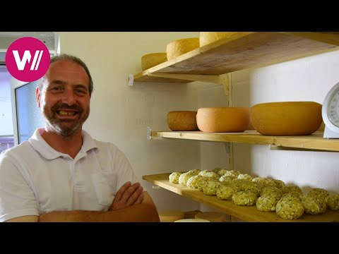 Harz Mountains in Germany - Preparation of the Famous Harz Cheese | What's cookin'
