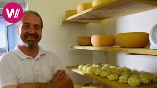 Harz Mountains in Germany - Preparation of the Famous Harz Cheese | What