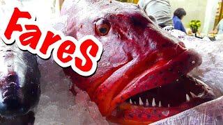 Олд Маркет 2019 Рыбный ресторан Fares Египет 2019 Шарм Эль Шейх