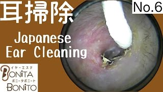 Cozy Japanese Ear Cleaning #6