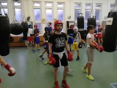 ТОРПЕДО (Москва) - школа Бокса тренировка