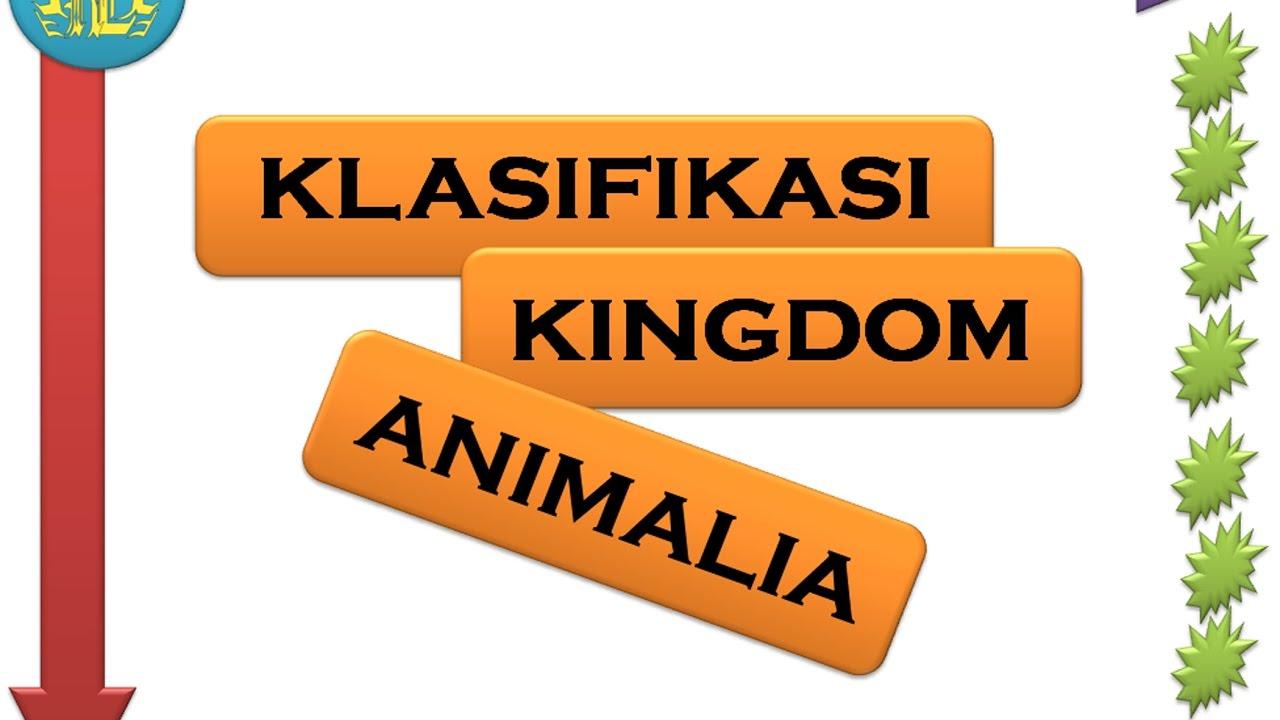 Image of: Peta Konsep Klasifikasi Kingdom Animalia Youtube Klasifikasi Kingdom Animalia Youtube