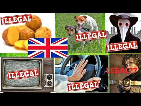 12 Most RIDICULOUS British Laws Still in Existence!!!