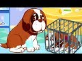 Fun Pet Care Kids Games - Play Puppy's Rescue & Care, Dress Up - Animal Care Games For Children