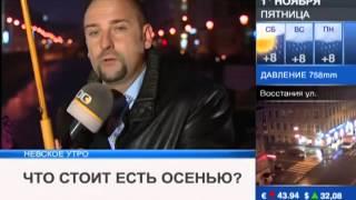 Доктор Борменталь на 100ТВ в Невском Утре- Князьков А.В.