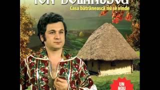 Download Ion Dolanescu - Mi-e dor de baiatul meu