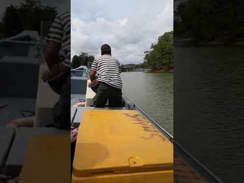 Tekong bot terpantas di sg Mersing ..