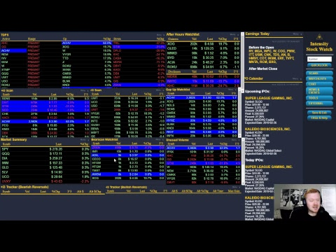 Avery Day Trading Live Stream