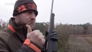 Wild Boar Fever 7 - Trailer