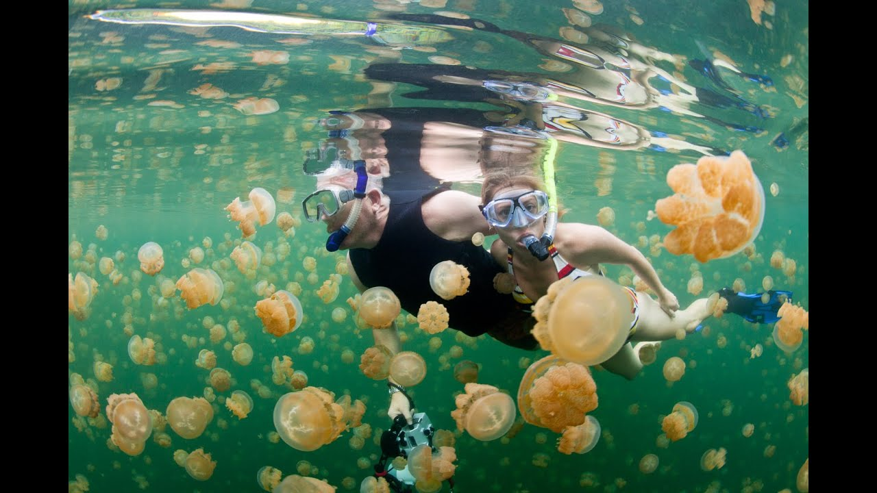 Coolest Underwater Places On Earth YouTube - 6 amazing underwater attractions