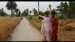 Punjab Pind Simple Natural Village Life In Pakistan