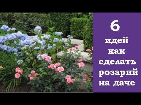 ❀ 6 идей, как сделать розарий на даче