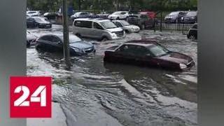 Ливень в Петербурге: в некоторых местах уровень воды достигал середины корпуса машины - Россия 24
