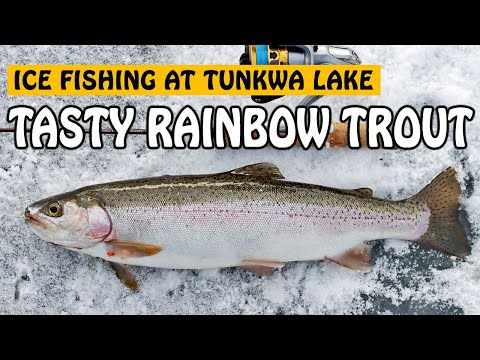 ICE FISHING For Tasty Tunkwa Lake RAINBOW TROUT! | Fishing With Rod