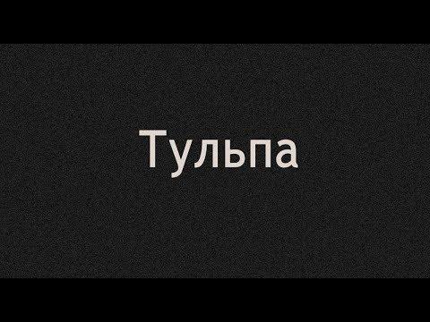 Отзывы о СПбГУ. Санкт-Петербургский государственный