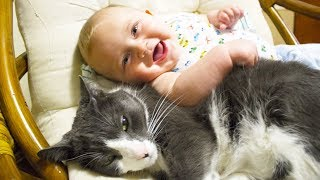 Cute Cats and Dogs Love Babies Compilation 2015 [NEW HD]