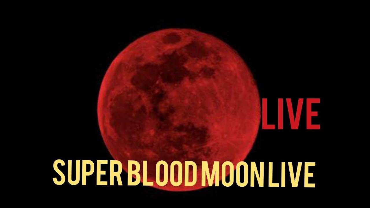 blood moon 2019 live stream nasa - photo #35