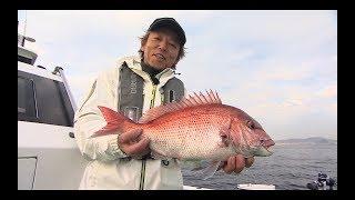 #270 冬の東京湾でコマセ釣り マダイが新春を華やかに彩る