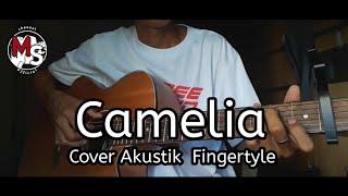 lagu selow cover akustik- fingerstyle CAMELIA
