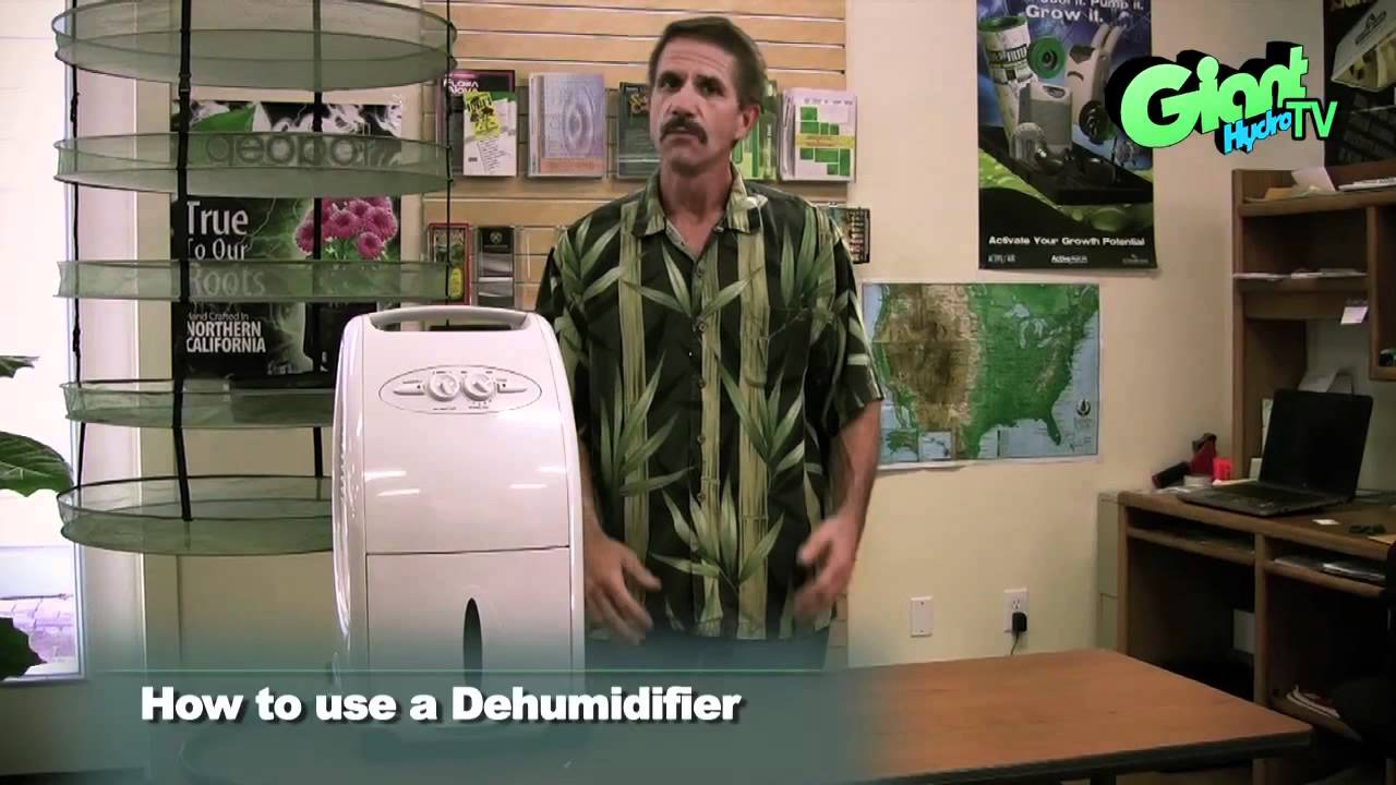 How to use a Dehumidifier in your indoor grow room  sc 1 st  YouTube & How to use a Dehumidifier in your indoor grow room - YouTube