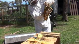 Top Bar Hive Update 6th October 2014 - Things Dont Always Go To Plan