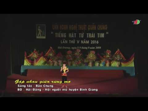 Gặp Nhau Giữa Rừng Mơ - Hải Đăng (Video By NTT)