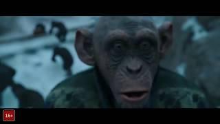 Планета обезьян  Война   Русский Трейлер 3 финальный, 2017   MSOT