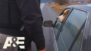 Live PD: Herro Officer? (Season 4) | A&E