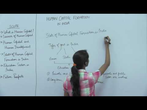 Human Capital Formation in India _ Part4 _ India: State of Human Capital Formation _ Kavya Singhal