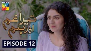 Tera Ghum Aur Hum Episode 12 HUM TV Drama 6 August 2020