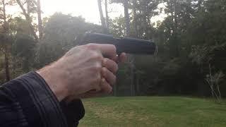 Pellet/BB gun DIY BACKYARD AUTO RESET RANGE