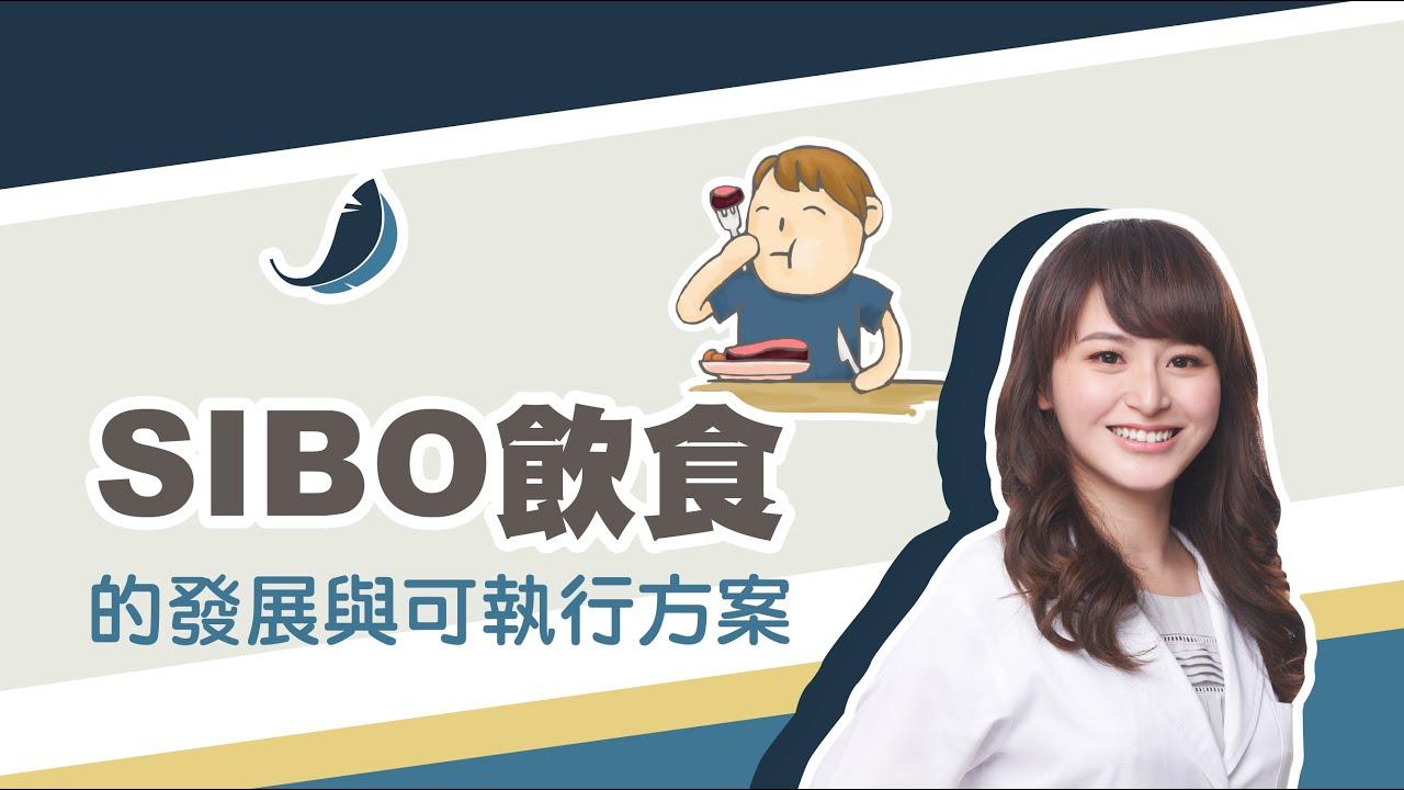 【功能醫學腸道特殊飲食】SIBO飲食的發展 | SIBO飲食的介入時機點 | 賀菡懿營養師上課精華
