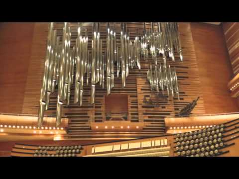 Saint-Saëns : Symphonie no 3 en do mineur op. 78 - II. Allegro moderato - Presto