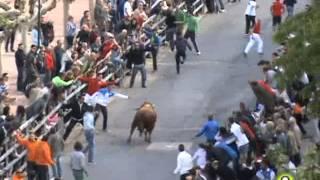 V Toro de la Feria - Encantado - Medina del Campo 2013