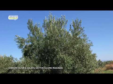 Halatlı Zeytin Silkme Makinası - Kadıoğlu Vibrope Olive S - 2017
