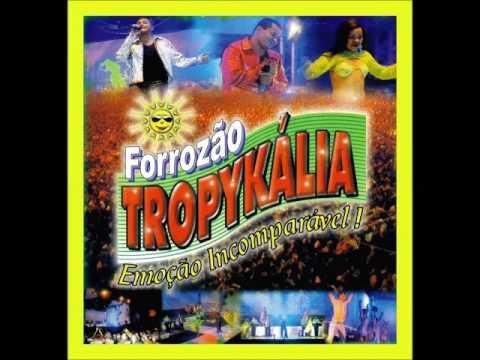 CORES TROPYKALIA PLANETA BAIXAR CD FORROZAO