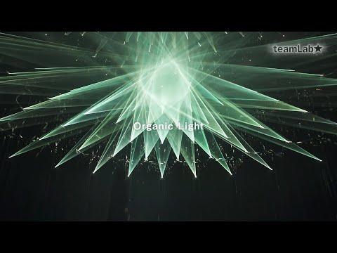 Organic Light