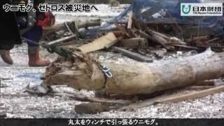 東日本大震災復興支援 メルセデス・ベンツ ゼトロス