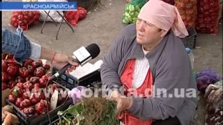 видео Овощи | Садоводство и огород | Предприятия АПК