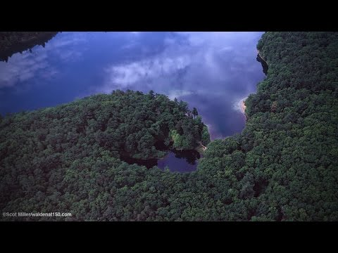 Don Henley's Walden Woods Sweepstakes from YouTube · Duration:  1 minutes 56 seconds