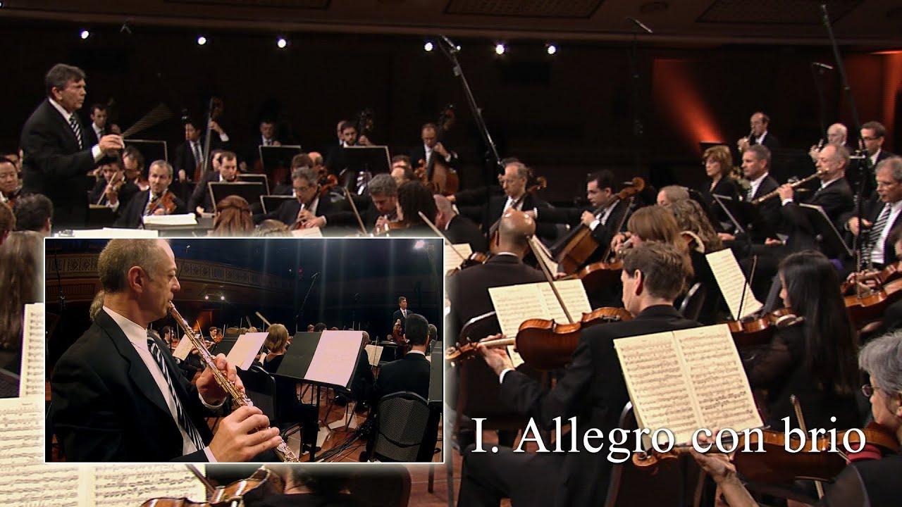Beethoven 5th Symphony, Mov I (Flute)