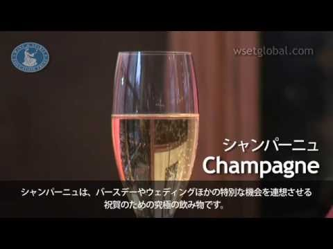 WSET 3 Minute Wine School  Champagne, presented by Jancis Robinson MW  Japanese subtitles